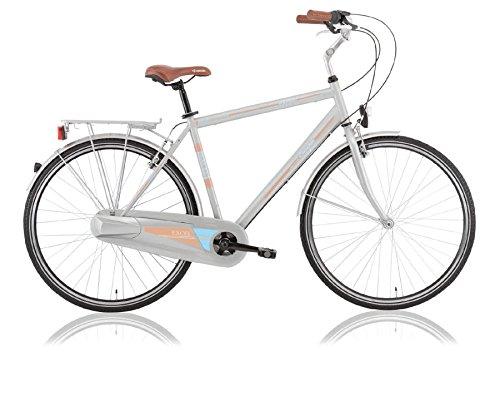 28 Zoll Herrenfahrrad Cityfahrrad City Fahrrad Bike Rad 3 GANG NEXUS Nabenschaltung EUROPA SILBER