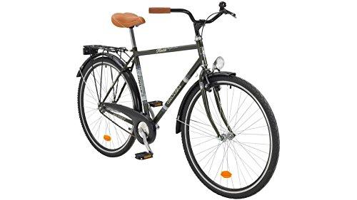 Onux Citybike Herren Florida, 28 Zoll, 1 Gang, Rücktrittbremse 71,12 cm (28 Zoll)